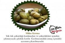 Milas Kırma Zeytin 1 KG
